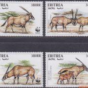 oost-afrikaanse steenbok