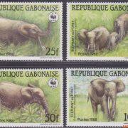 bos olifant