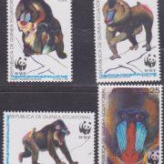 noordafrikaanse baviaan