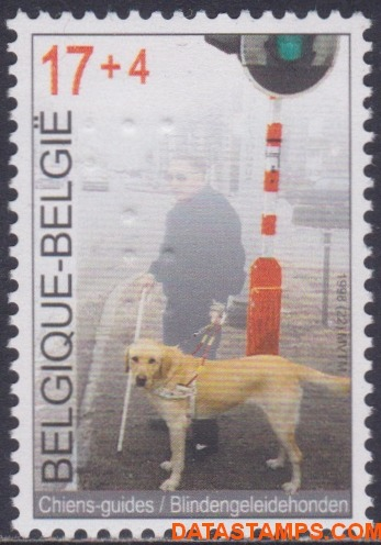 blindegeleidehonden